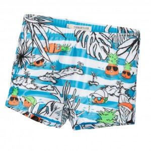BILLYBANDIT Boys Stripe Blue Swim Shorts